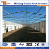 Latest Steel Structure Poultry House Made in China
