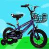 Factory Direct Sell Kids Bike/Baby Bike
