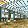 Economical Prefabricated Steel Structure Warehouse (SS-382)