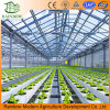 High-Tech Greenhouses Hydroponic System with Multi Choices