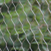 Stainless Steel Rope Garden Fence