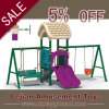 China Manufactory Outdoor Interesting Combined Swing and Slide (12146A)