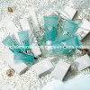 Hotel Amenities/Soap/Cosmetic/Body Lotion