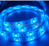 IP65 60SMD 5050SMD LED Strip Light, Blue LED Strip Light