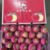 Fresh Unbagged Qinguan Apple