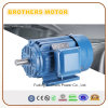 1.5kw 2.2kw 3kw 5kw 7.5kw 10kw 12kw 15kw with Three Phase AC Electric Induction Motor