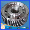 High Precision Stainless Steel Gear