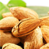 Top Quality Grade Delicious and Health Almonds Badam Raw Almond Sweet Almonds Bitter Almonds for Sale
