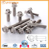 High Quality Gr5 (6Al-4V) Titanium Flange Head Bolts, Screw