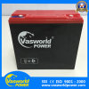 Good Quality 12V45ah Electric Vehicle Lead Acid Battery for Egypt Market