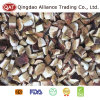 Top Quality Frozen Diced Boletus Mushroom