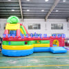 Creative Inflatable Bouncer House for Kids / Fire Retardant Inflatable Children Bouncy Castle