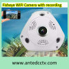Fisheye IP WiFi Camera with Recording Function to TF Card for Home Security