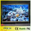 Full Color Indoor LED Display (P5)