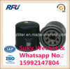 Auto Parts Oil Filter for Hyundai, Fleetguard, Donaldson (129150-35151)