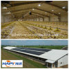 Prefab Steel Structure Chicken and Poultry House with Poultry Equipment