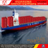 Shenzhen Guangzhou to Manila Philippines Container Cargo Shipping agent service
