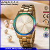 ODM Casual Fashion Stainless Steel Ladies Classic Wrist Watch (WY-P17003C)