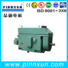 Three Phase Induction High Voltage Slip Ring Motor