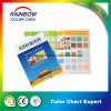 Emulison Color Chart for Buidling Material Wall Paper