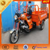 Strong Tricycle for Cargo