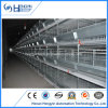 China Market Export Automatic Poultry Chicken Cage Control Shed Equipment