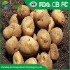 Ruixu Fresh Potatoes Specially Exported Supplier with AAA Grades and High Levels