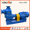 Yonjou Self Priming Clean Water Pump