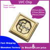 LED Chip UVC 265nm 0.5W High Radiation Flux 6-10MW Diode for Disinfection