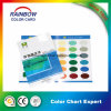 Customized Design Colour Chart with Paint Color Shade