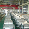 Stainless Steel Coil 304 with Best Prices