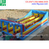 3 Lane Inflatable Bungee Run for Sale (BJ-GM67)