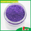 Colorful Glitter Powder Stock for Clothing