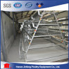 Hot Sell! Poultry Galvanizated Equipment Frame with Low Price From China