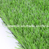 (STO) Shape Sports Football Stadium Artificial Grass Football