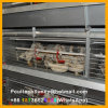 Automatic H Type Poultry Battery Cages for Pullet