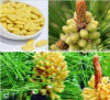 100%Natrual Organic Pine Pollen (1250Mesh)Rich more than 200 kinds of bioactive nutrientsPure natural nutrition/Drug treasury,Very rare and precious health food