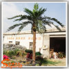 Customized Decorative Plant Plastic Artificial Coconut Palm Tree