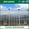 Modern Style Greenhouse Covered with PC Sheet/Glass for Vegetables/Fruits/Flowers/Exhibition
