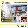 Complete Automatic Mango/Banana/Passion Juice Production Line
