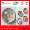 Decorative Crystal Glass Fridge Magnets for Promoion Gifts