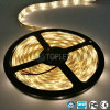 SMD 2835 LED Strip Outdoor Light Single Color 120LEDs/M 12V DC