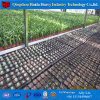 Qingzhou Plastic Film Greenhouse Hydroponic System for Sale