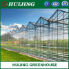 Complete Glass Agricultural Greenhouse Turnkey Project with Tomato Hydroponic Growing System