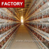 H Type Chicken Egg Layer Cage Price for Nigeria