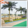 Guangzhou Silk Palm Trees Supplier Artificial Coconut Palm Tree