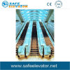 Ce Certified Passenger Escalator