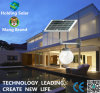 IP65 Solar Outdoor Lamp with Intelligent Light Control