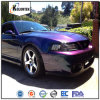 Chameleon Pigment and Flake for Car Paint