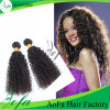 100% Unprocessed Kinky Curly Brazilian Virgin Hair Human Hair Extension